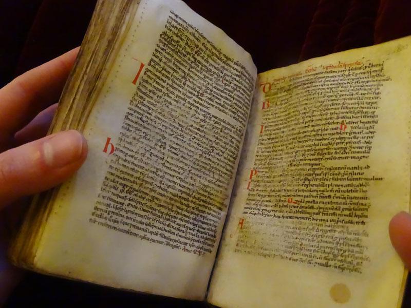 3-manuscrit-ouvert.jpg